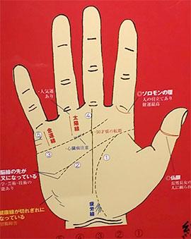 京占い祇園」は八坂神社すぐ近く:タロットカード